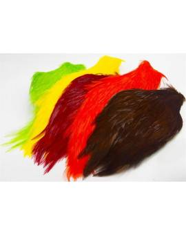 STREAMER ROOSTER NECK