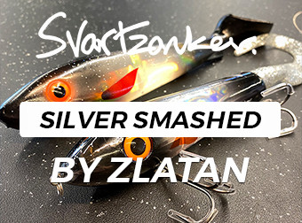 Smashed Silver By Zlatan