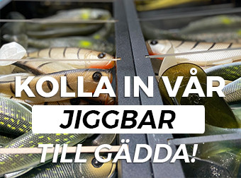 Jiggbbar - Gädda